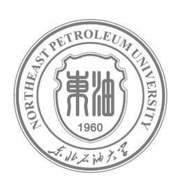 Northeast Petroleum University